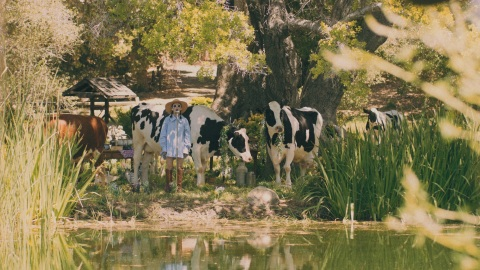 """Celebrating Cottage Living with an IRL """"Moo""""-Sic Video (Photo: Business Wire)"""