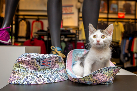 A MeoowzResQ kitten at a Skechers adoption event in California during National Foster a Pet Month. Through its partnerships with Petco Love and animal welfare organizations, Skechers has donated over $7 million, promoted pet adoptions and raised funds in stores – helping to save and support over 1.3 million shelter pets in the United States and Canada. (Photo credit: Lori Fusaro for BOBS from Skechers + Petco Love)