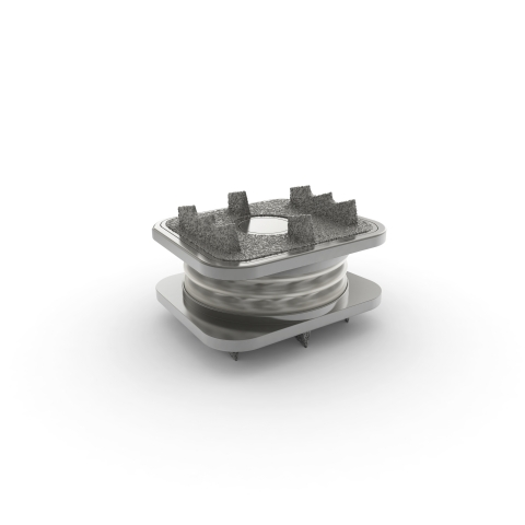 Image of the Orthofix M6-C™ artificial cervical disc (Photo: Business Wire)