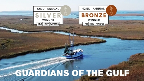 Guardians of the Gulf, an eye-opening documentary that explores the tumultuous relationship between the Gulf of Mexico and the conservationists determined to protect it, received 2 Telly Awards. (Graphic: Mary Kay Inc.)