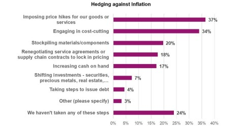 Tactics companies are using to hedge against inflation - business executives were asked to choose all that apply. (Graphic: Business Wire)