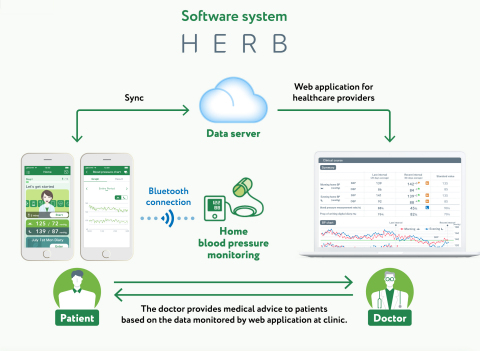 Overview of the digital therapeutic intervention (HERB system) for essential hypertension. (Graphic: Business Wire)