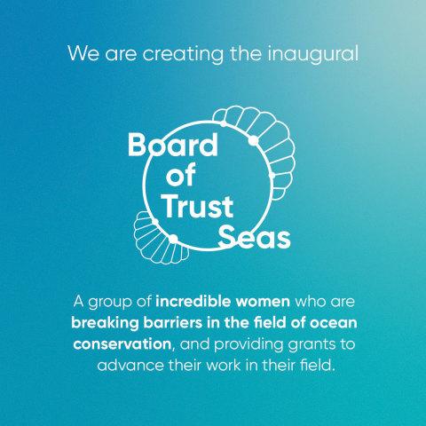 Gillette Venus creates the inaugural Board of Trust-Seas. (Graphic: Business Wire)