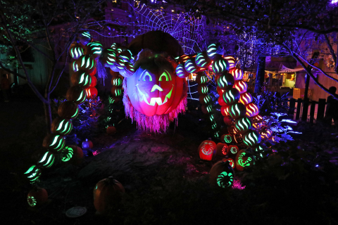 Dollywood's Great Pumpkin LumiNights presented by Covenant Health features a number of impressive displays, including this giant spider made of pumpkins. Dollywood's Harvest Festival presented by Humana takes place Sept. 24-Oct. 30. (Photo: Business Wire)