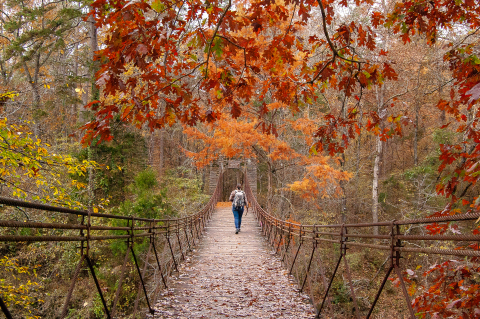 Grand Prize photo located at Tishomingo State Park in Mississippi by Dean Schumacher (Photo: Business Wire)