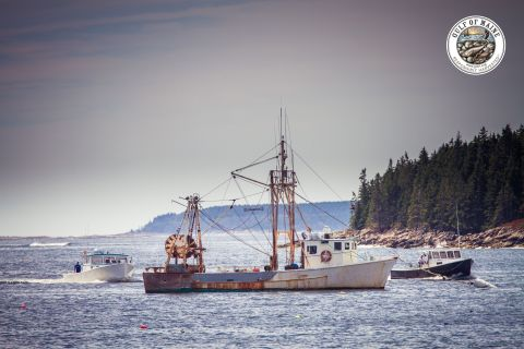 Aramark announced a new commitment to increasing local seafood sourcing in New England, through a partnership with the Gulf of Maine Research Institute (GMRI). (Photo: Business Wire)