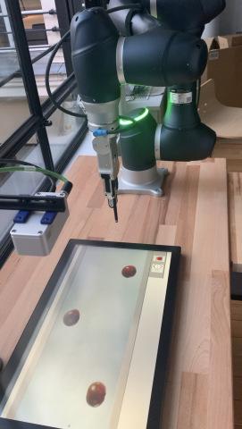 Конвейерная сортировка с помощью готового к использованию ИИ от GML и промышленной 3D-камеры D435e от FRAMOS (Фото: Business Wire)
