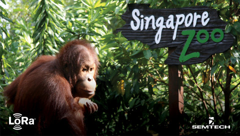 The Singapore Zoo is now on target to save 10% on total energy consumption through deploying smart water and energy meters using LoRaWAN® (Photo: Business Wire)